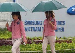 Lợi nhuận Samsung giảm hơn một nửa trong quý 2/2019