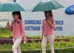 Samsung báo lãi kỷ lục, lợi nhuận tăng gần 60% trong quý 3/2020